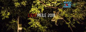 Kollektiv Roter Sternenfunke @Lichtmeile 2018